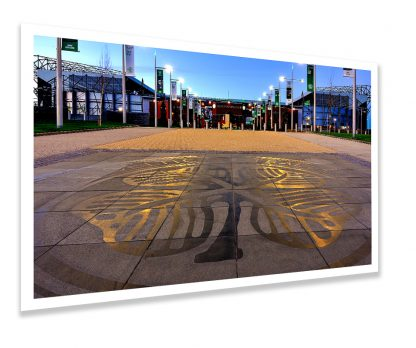 Celtic Way Clover Photo Print