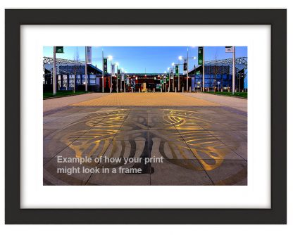 Celtic Way Clover Photo Print Framed
